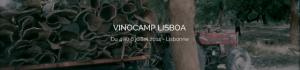 Vinocamp lisboa