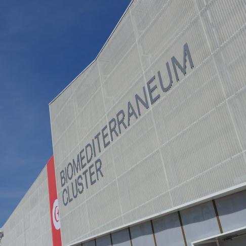 Cluster Biomediterraneo