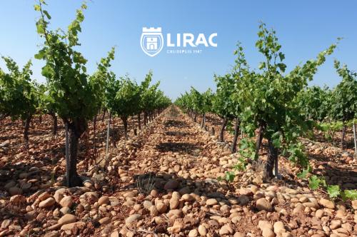 LIRAC-COVER