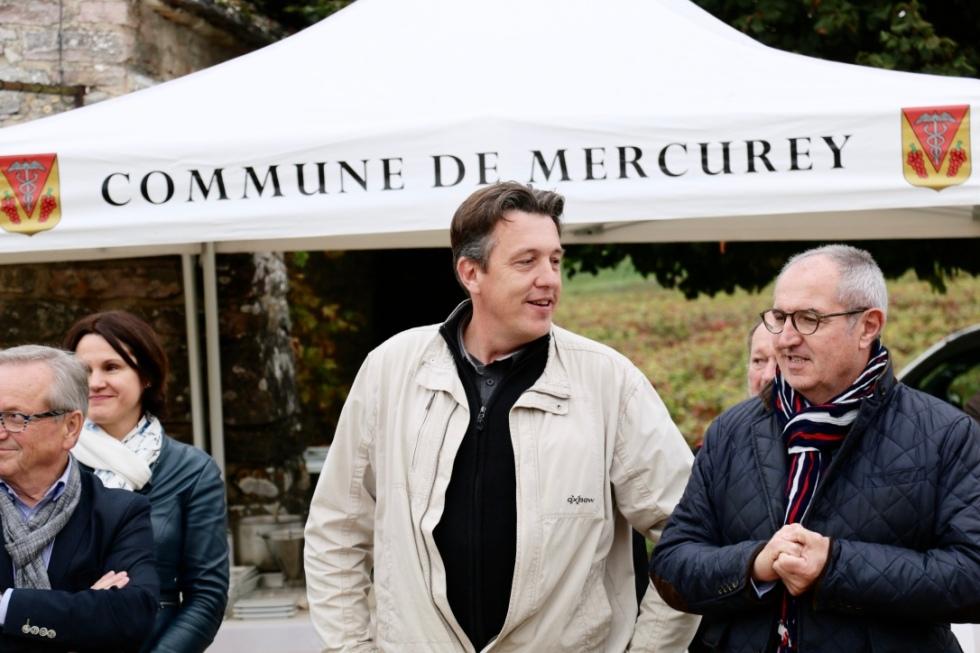 maire-de-mercurey
