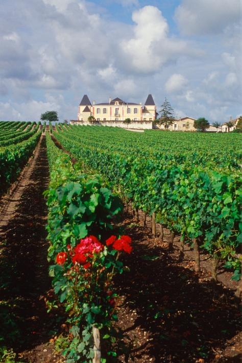 2005_Château de France - de loin